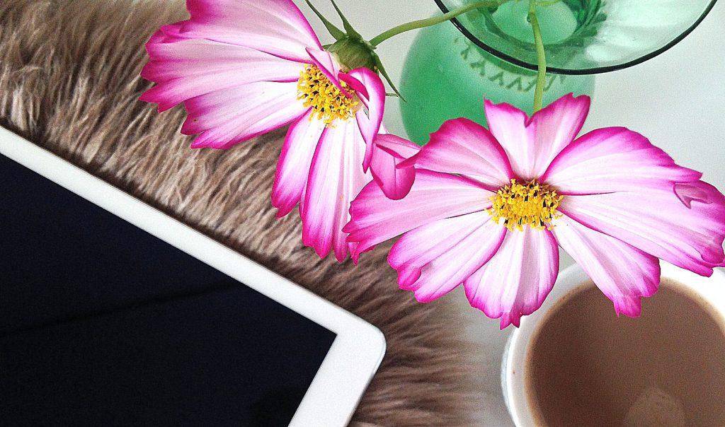 hyggelæsning af haveblogs på iPad