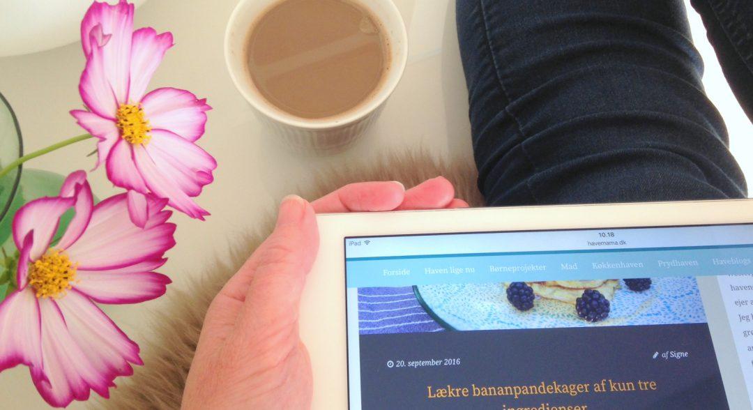 læsning af haveblogs på blogroll