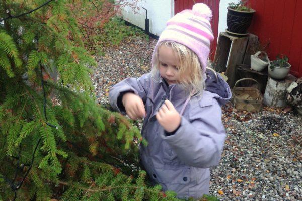 pige sætter lyskæde på juletræ