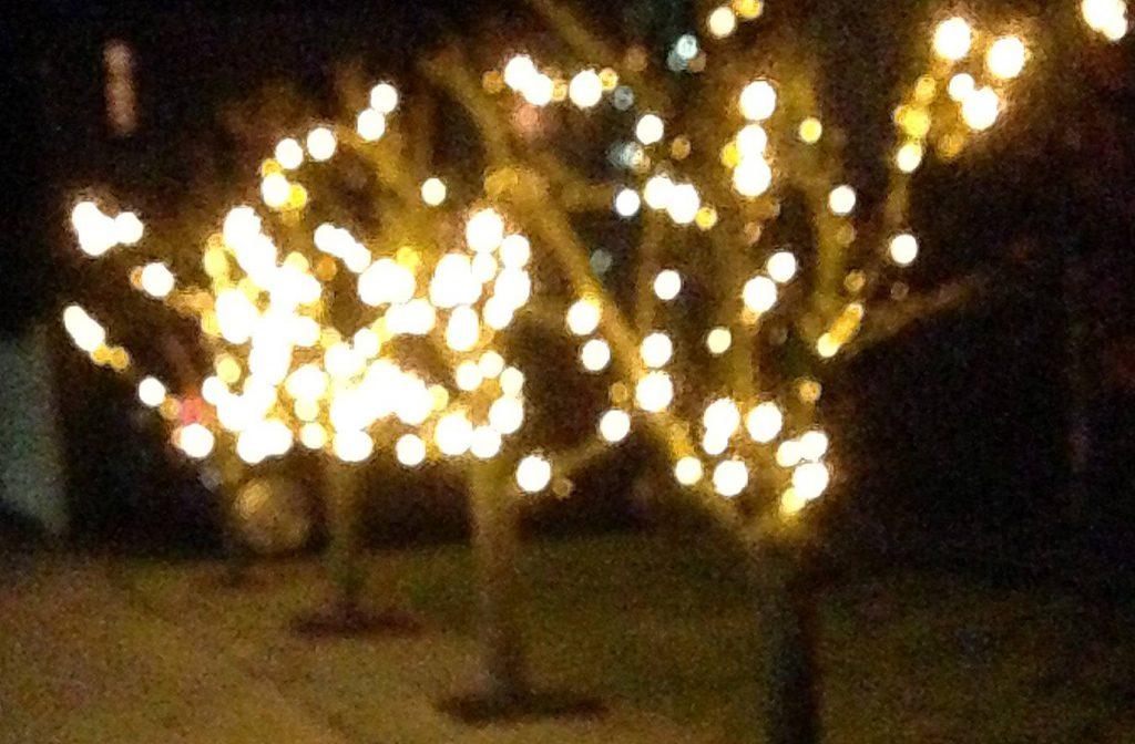 julelys på træer