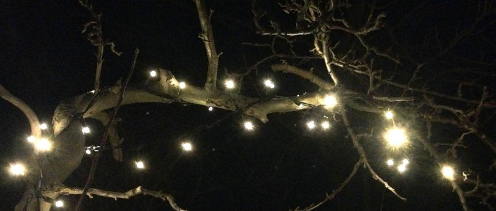 lyskæde i træ